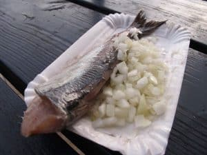 Raw herring with onions