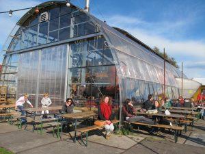 Greenhouse cafe Noorderlicht
