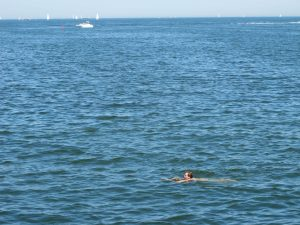 Swimming at the IJburg Baai