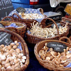 Biological market Amsterdam