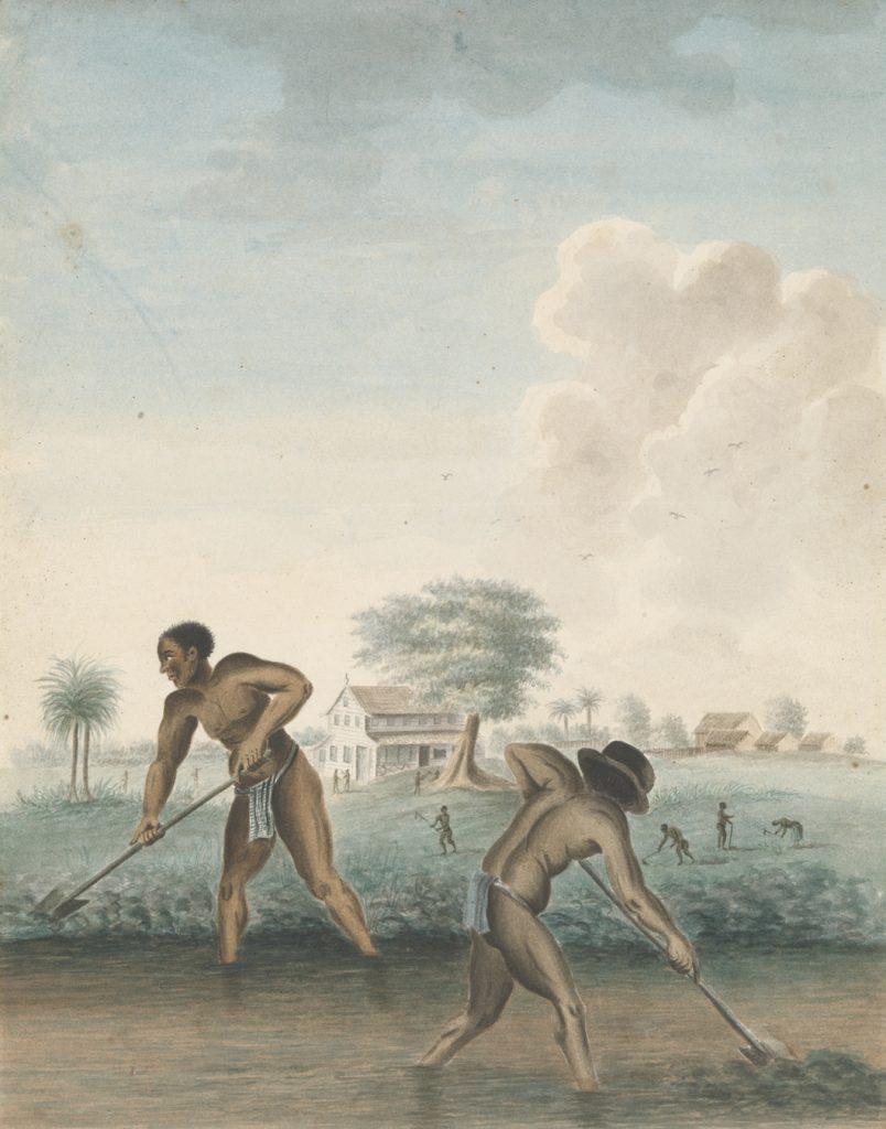 Slavery @ Rijksmuseum